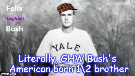 FELIX BUSH, GHW Bush's half brother