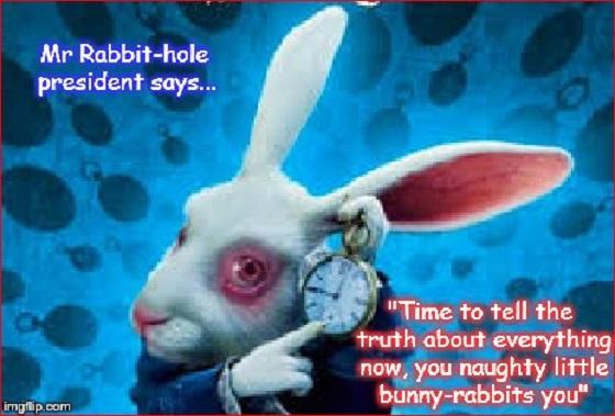 Mr Rabbit-hole president says