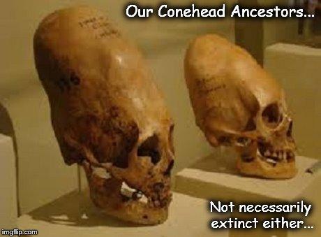 Our Conehead Ancestors