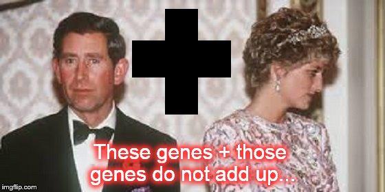 Charles und Diana ~ These genes plus those genes ~
