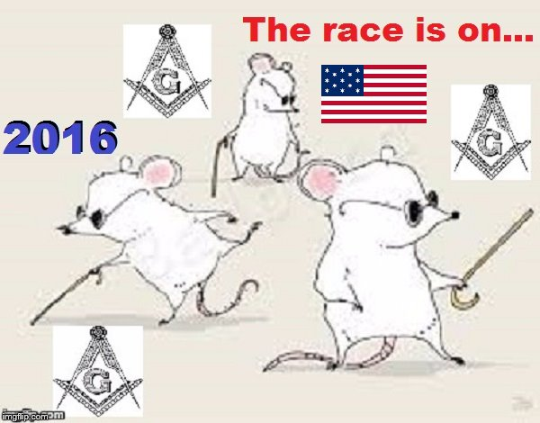 Three blind mice 2016 ~ The race is on ~