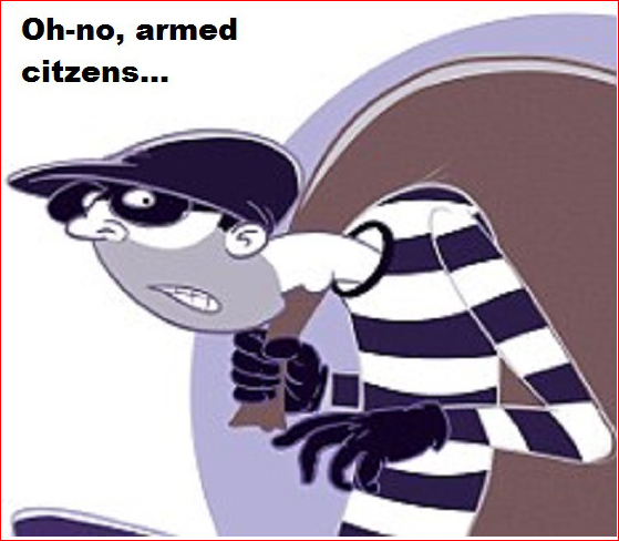 Oh-no, armed citizens Thief Robber ~