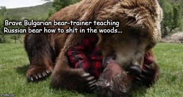 Brave Bulgarian Bear-trainer