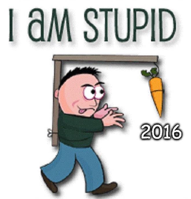 I-am stupid 2016 660