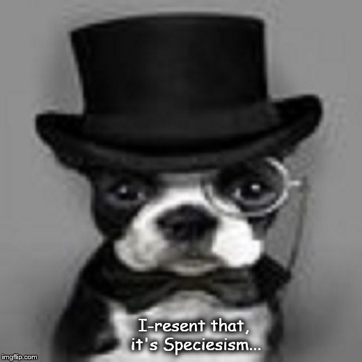 Topp Dog Speciesism