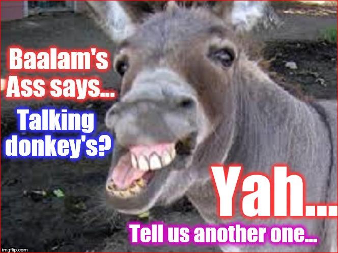 America religious right talking donkey ass