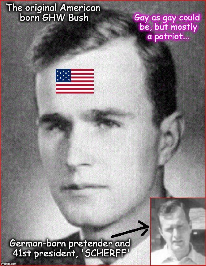 Bush and Bush
