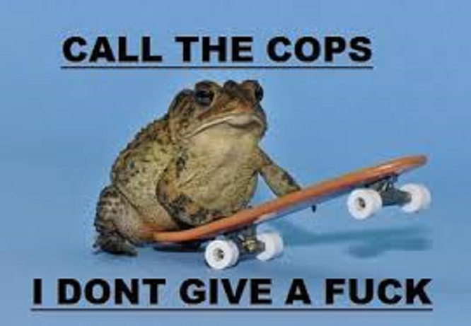 Frog ~ Call the cops