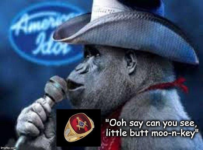 Little Butt monkey American Idol Mason