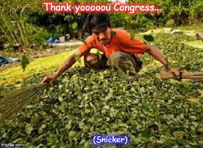 Coca ~ Thank you Congress ~