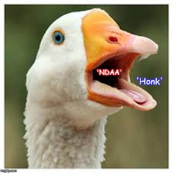 Goose NDAA Honk ~