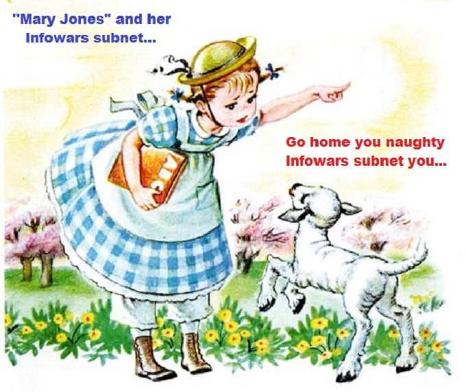 Mary Jones and her Infowars subnet