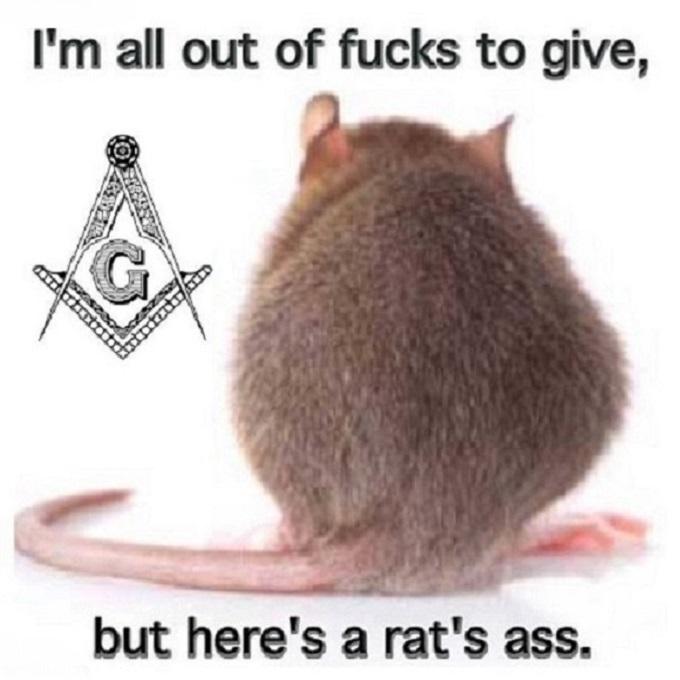 Rat's ass Mason ~ TIDY 680