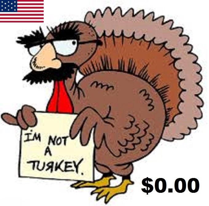 American turkey 0.00