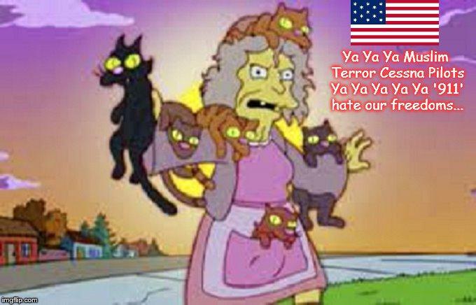 Cat Lady Muslim Terror American Flag Simpsons