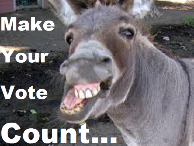Donkey Ass Make your vote count