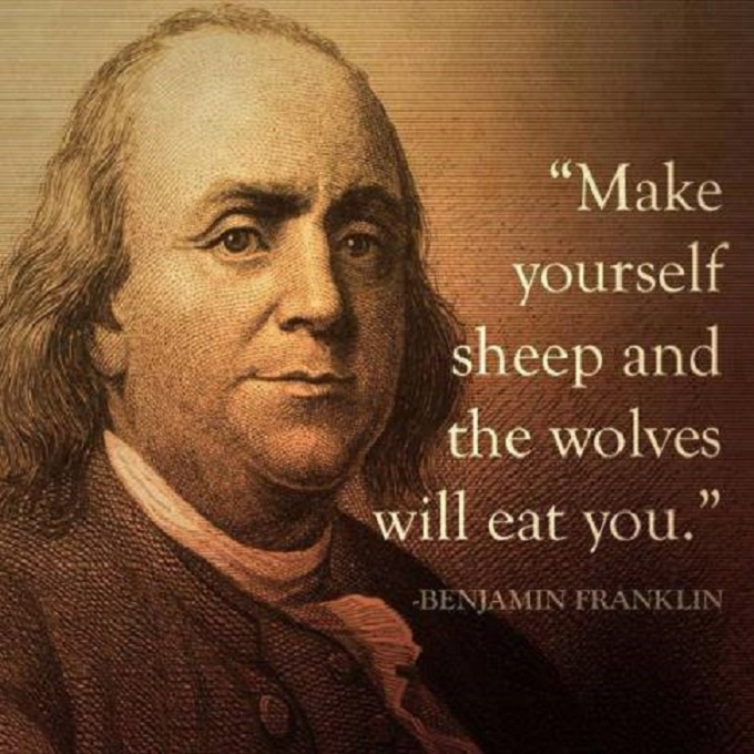 Franklin sheep
