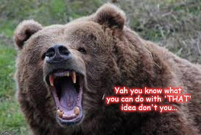Kodiak Bear That Idea