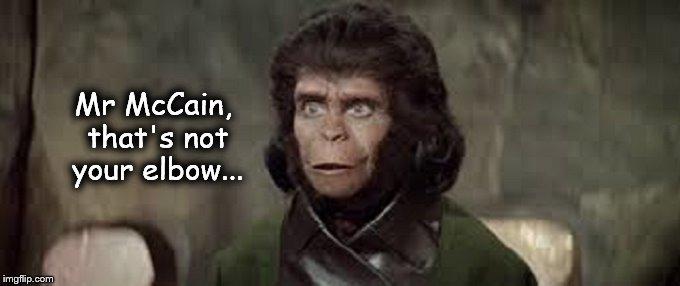 Monkey ape McCain elbow