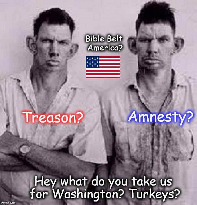 Treason Amnesty Bible Belt inbred turkey