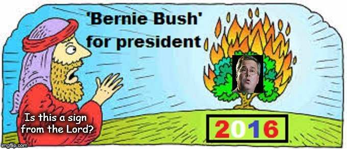 Bernie Bush for President 2016 ~ Is this a sign
