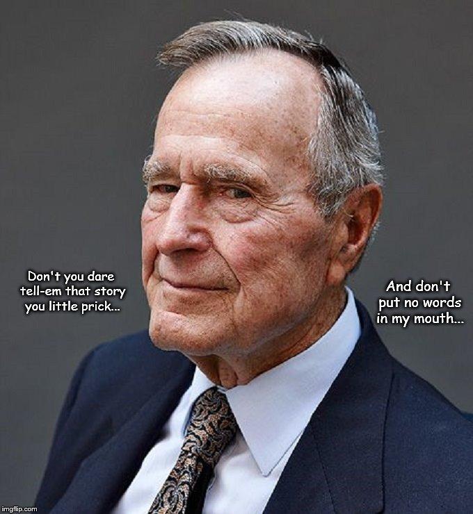 Bush ~ Story