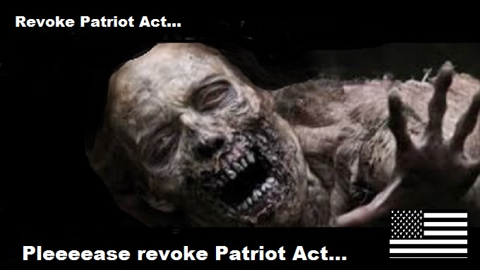 Patriot Zombie brains American flag REVOKE PATRIOT ACT