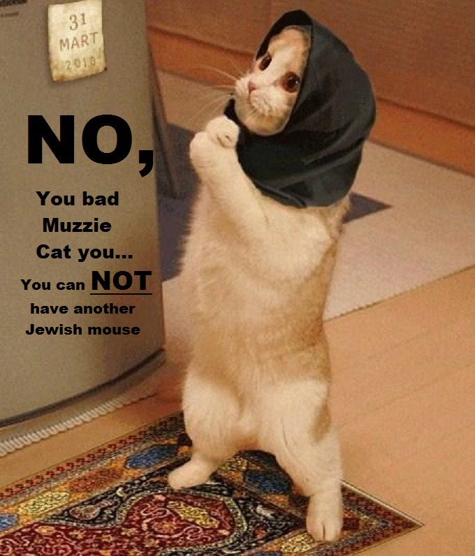 Cat with Shawl Bad Muzzie Cat Jewish mouse