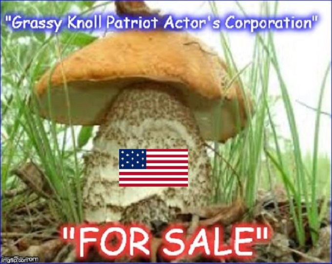 Grassy Knoll Patriot Actor's Corporation Mushroom 680