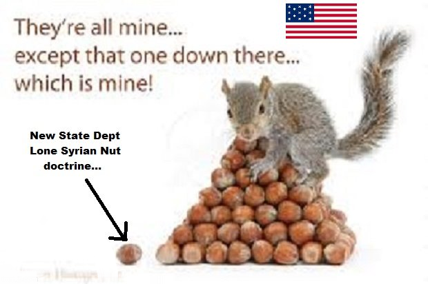Lone Syrian Nut STATE DEPT