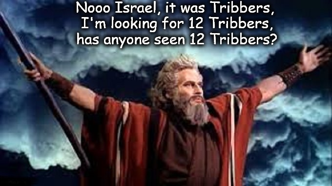 Moses and the 12 Tribbers