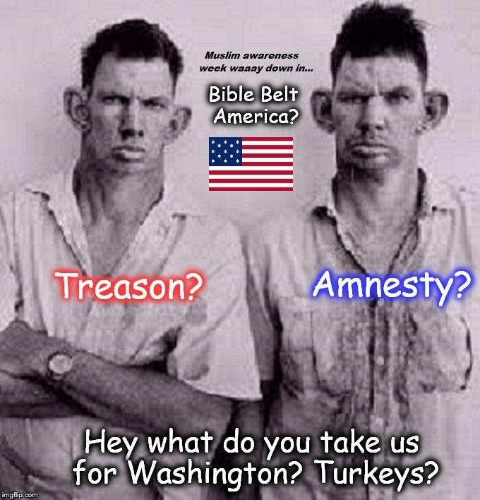 Treason Amnesty Bible Belt inbred Muslim awareness week