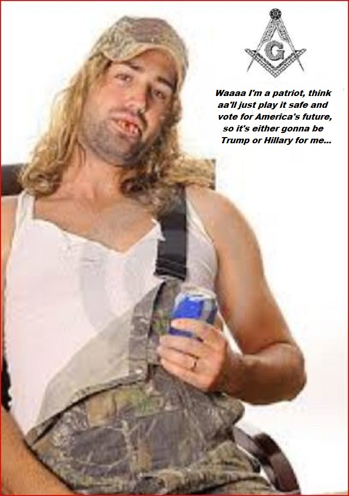 Trump or Hillary patriot Hillbilly