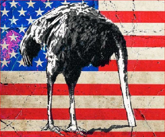 American Emu ~
