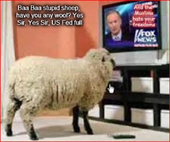Baa Baa stupid sheep Muslims Fox News US Fed