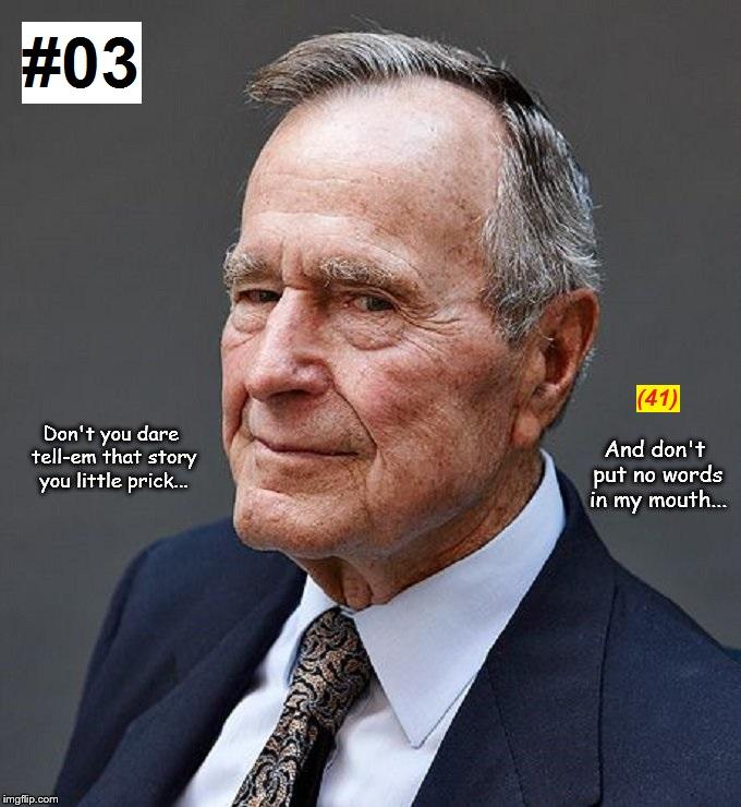 Bush ~ Story #03-41