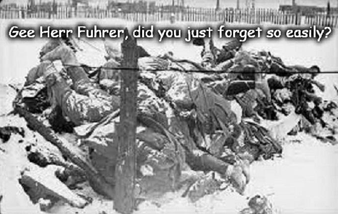 Gee Herr Fuhrer ~ Frozen German soldiers ~