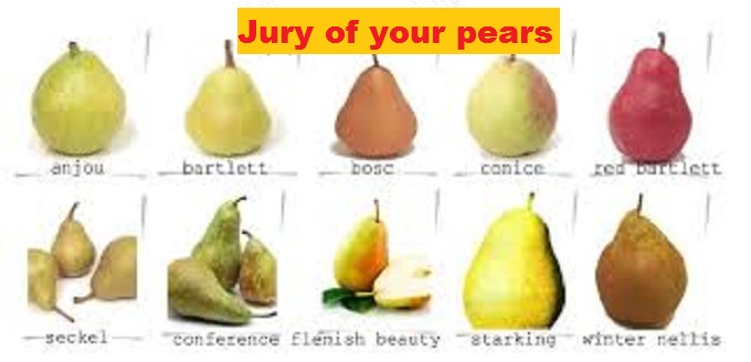 Jury of your Pears