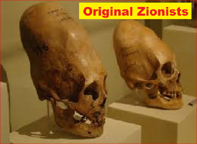 CONEHEAD LARGE Original Zionists LARGE 680