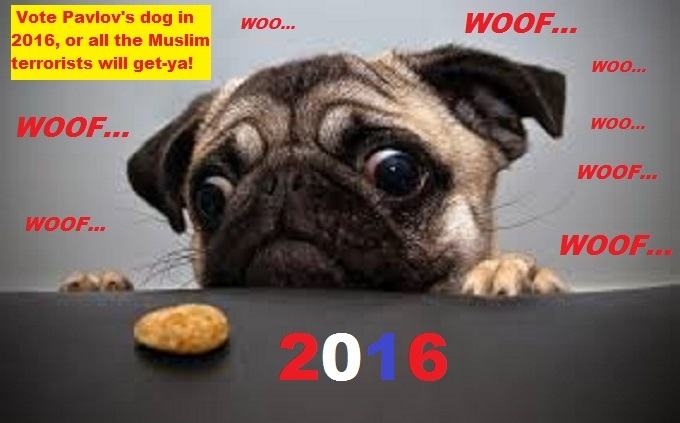 Cross eyed Pavlov's pug dog Muslim terror 2016