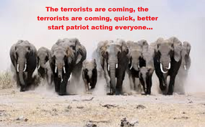 Elephant Stampede the terrorists are coming