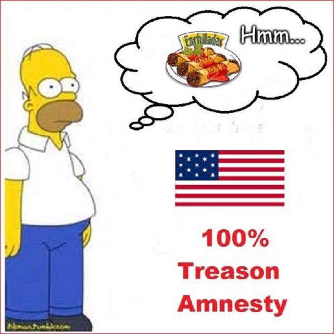 Homer Simpson Treason Amnesty ENCHILLADAS 680