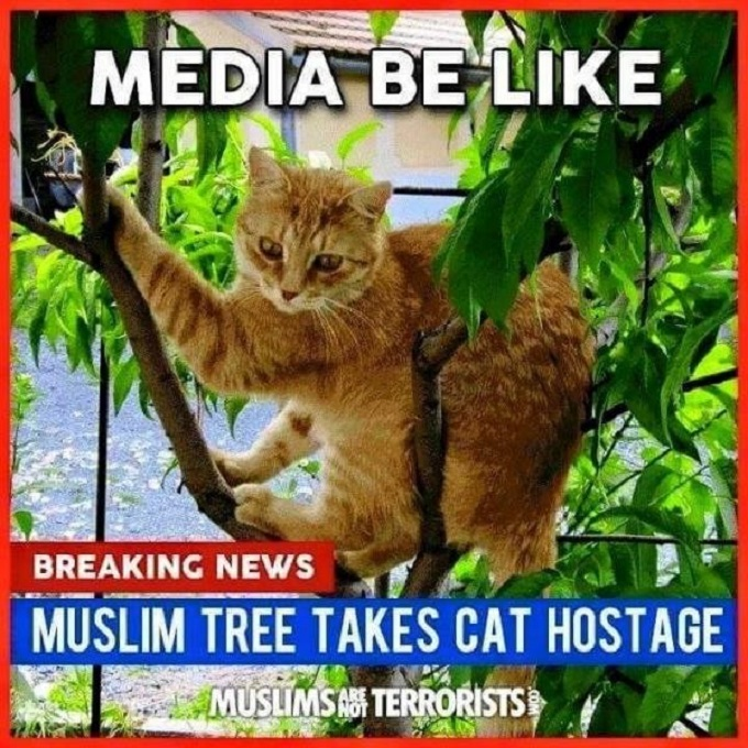 Muslim Tree takes cat hostage