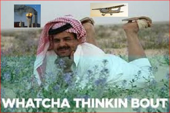 Muslim Twin Towers Cessna