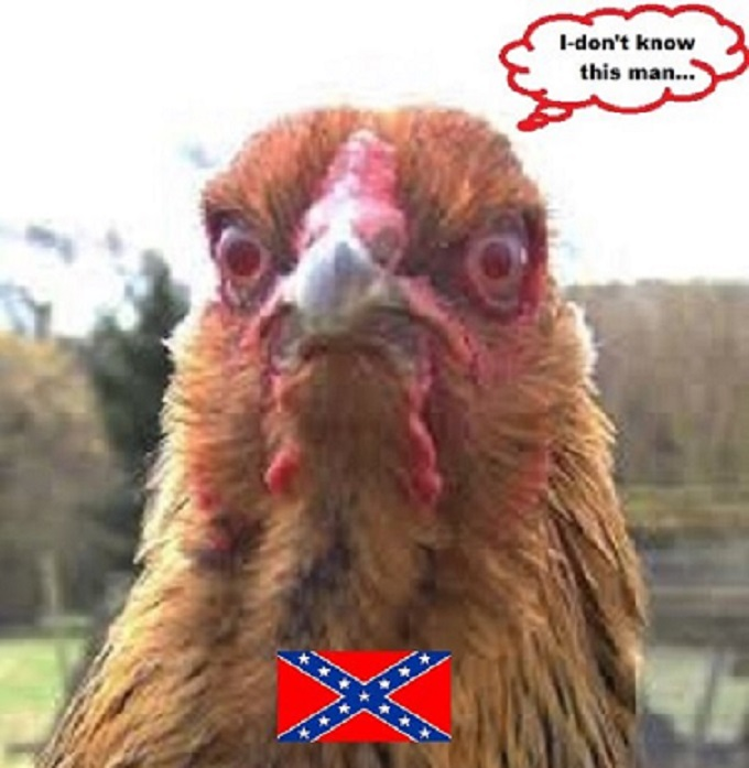 Rebel Chicken CROPPED