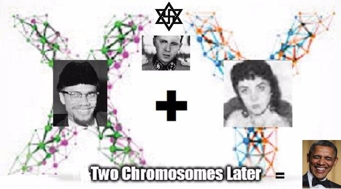 The Obama Malcolm Z Mengele graphic