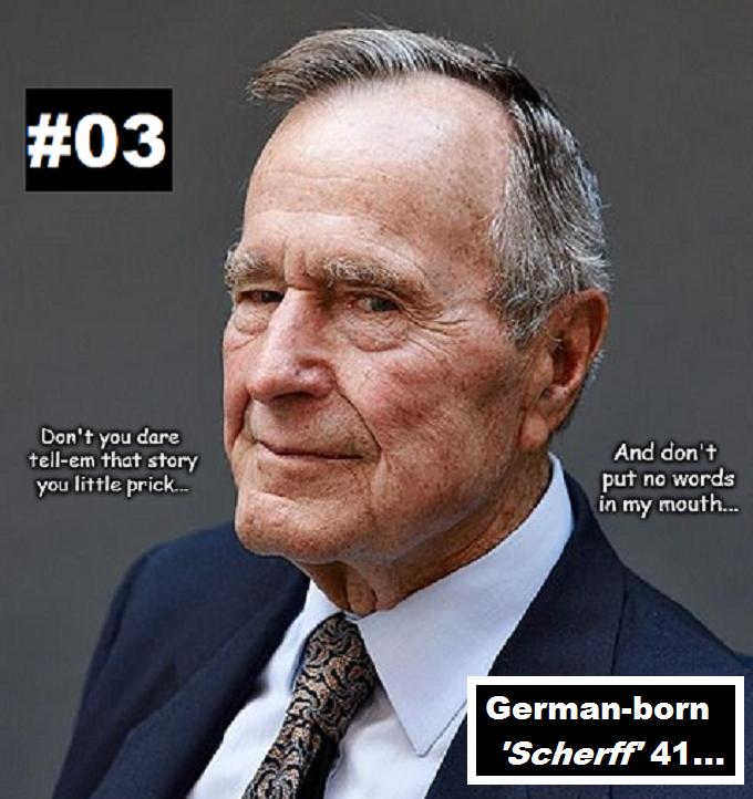 Bush Mr 41 #03