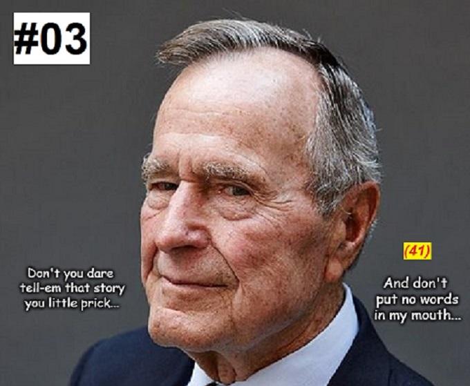 Bush ~ Story #03-41 CROPPED