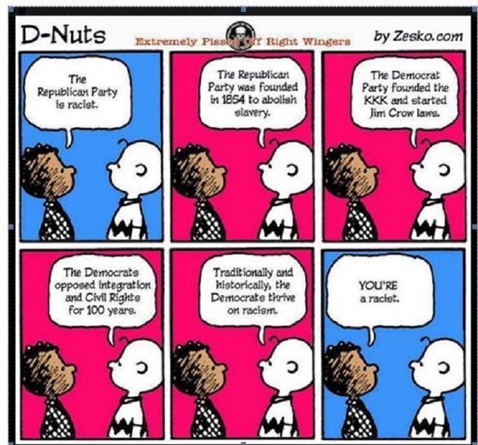 D Nuts Charlie Brown racist cartoon