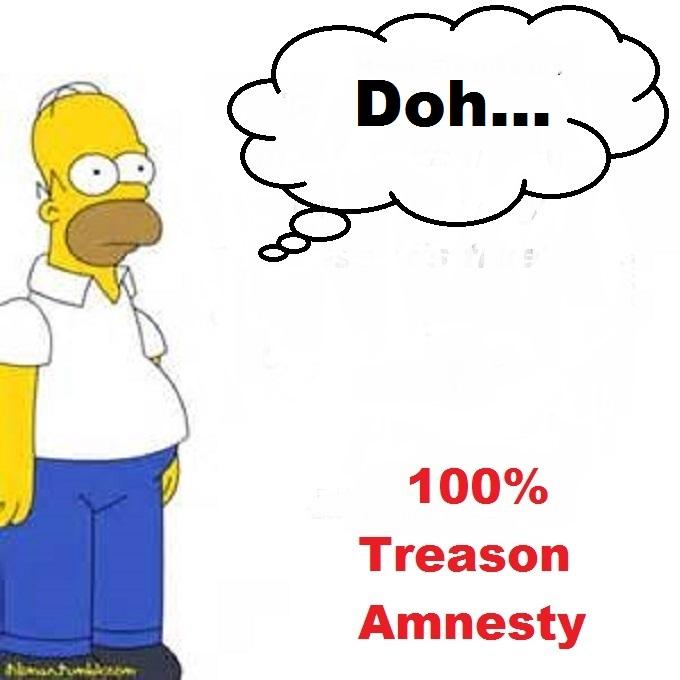 Homer Simpson 100 percent treason amnesty DOH